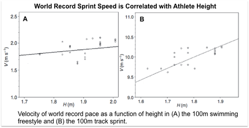 Velocity of world record pace as a function of height in (A) the 100m swimming freestyle and (B) the 100m track sprint.