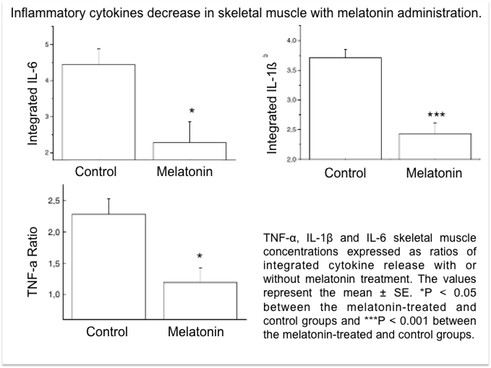 TNF-α, IL-1β and IL-6 skeletal muscle concentrations expressed as ratios of integrated cytokine release with or without melatonin treatment. The values represent the mean � SE. *P < 0.05 between the melatonin-treated and control groups and ***P < 0.001 between the melatonin-treated and control groups.