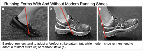 Barefoot runners tend to adopt a forefoot strike pattern (a), while modern shoe runners tend to adopt a midfoot strike (b) or rearfoot strike (c).