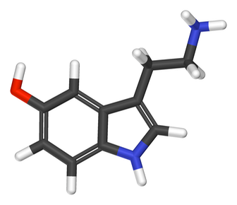 the molecular structure of serotonin or 5-hydroxytryptamine