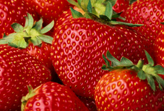 strawberries appetite exercise ghrelin