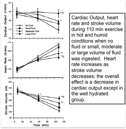 Heart rate, cardiac output, stroke volume show cardiovascular drift