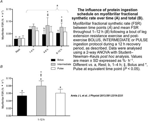 Myofibrillar fractional synthetic rate (FSR) between time points (A) and mean FSR throughout 1–12 h (B) following a bout of leg extension resistance exercise and post-exercise BOLUS, INT or PULSE ingestion protocol during a 12 h recovery period, as described in Fig. 2. Data were analysed using a 2-way ANOVA with Student–Newman–Keuls post hoc analysis. Values are mean � SD expressed as %� h−1. Different vs. a, Rest; b, 1–4 h; ‡, Bolus and *, Pulse at equivalent time point (P < 0.05).