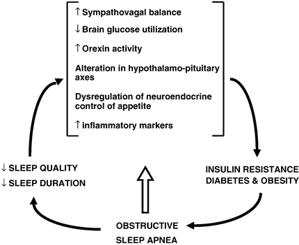 obstructive sleep apnea diabetes insulin resistance