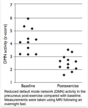 Reduced default mode network (DMN) activity in the precuneus post-exercise compared with baseline.  Measurements were taken using MRI following an overnight fast.