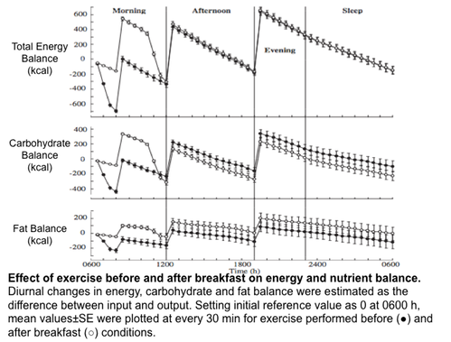 Effect of exercise before and after breakfast on energy and nutrient balance. Diurnal changes in energy, carbohydrate and fat balance were estimated as the difference between input and output. Setting initial reference value as 0 at 0600 h, mean values�SE were plotted at every 30 min for exercise performed before ( ● ) and after breakfast ( ○ ) conditions